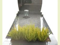 Golfkop graniet met tuinperk en beplanting